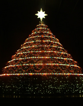 Living Christmas Tree.Alive In The Spirit Events Living Christmas Tree