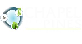 Chapel In The Pines - Arnold, CA logo