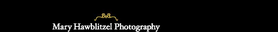 Mary Hawblitzel Photography logo