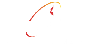 Evangelical United Methodist Church logo