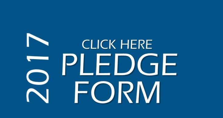 Roscoe Methodist Church  Give  Pledge Form