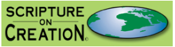 Scripture On Creation logo