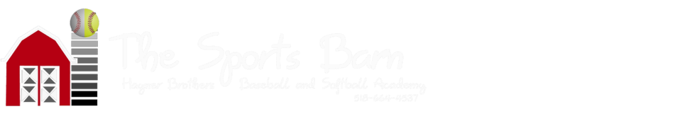 The Sports Barn logo