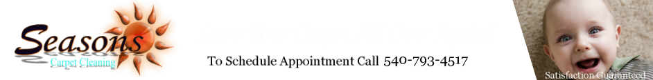 Seasons Carpet Cleaning logo